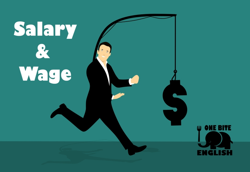 Salary and Wage