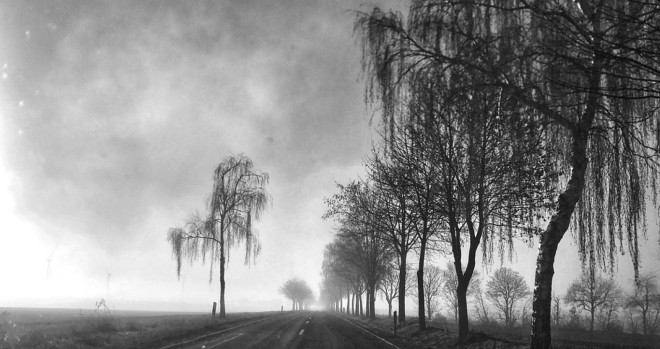 Nature Sky Landscape Dark Trees Gloomy Road